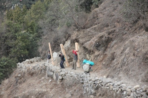 Porters carry heavy loads of lumber for building houses in the Khumbu.